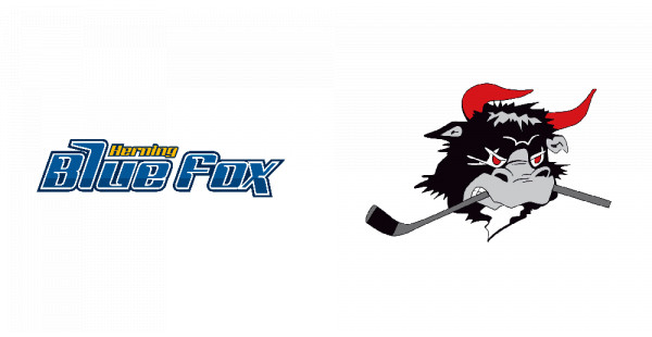 Herning Blue Fox vs. Rødovre Mighty Bulls