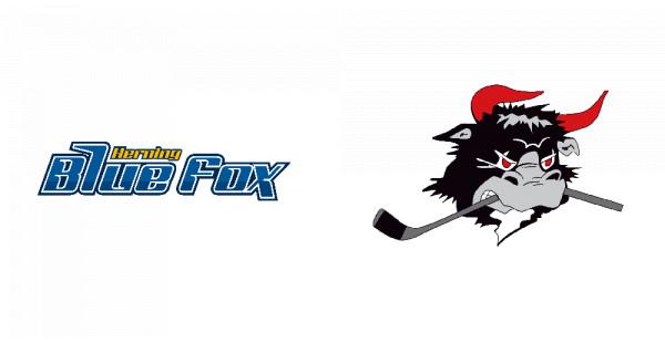 Herning Blue Fox vs. Rødovre Mighty Bulls