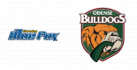Herning Blue Fox vs. Odense Bulldogs
